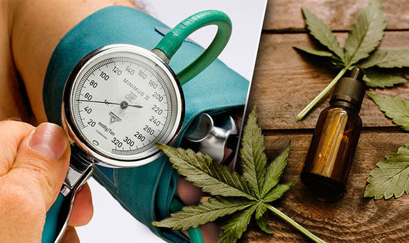 CBD against high blood pressure
